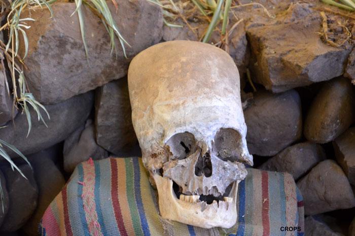 OVNI : Le mystère des crânes allongés