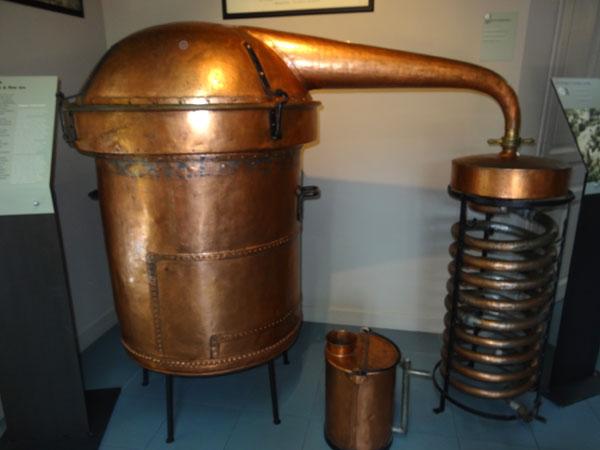Musee-de-lavande-1