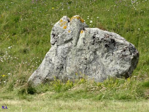 Veilleurs-de-pierres